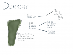 """Diversity: """"VT is not very diverse in the general population."""" This discussion focused more on gender. Fight social exclusion: head on face issue & provide space, visible leaders. Increase skill development: Things like Girl Develop It."""